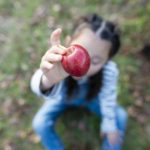 「林檎の教え」